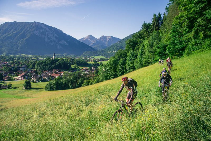bike, mountainbike, chiemgau king, chiemgau-king